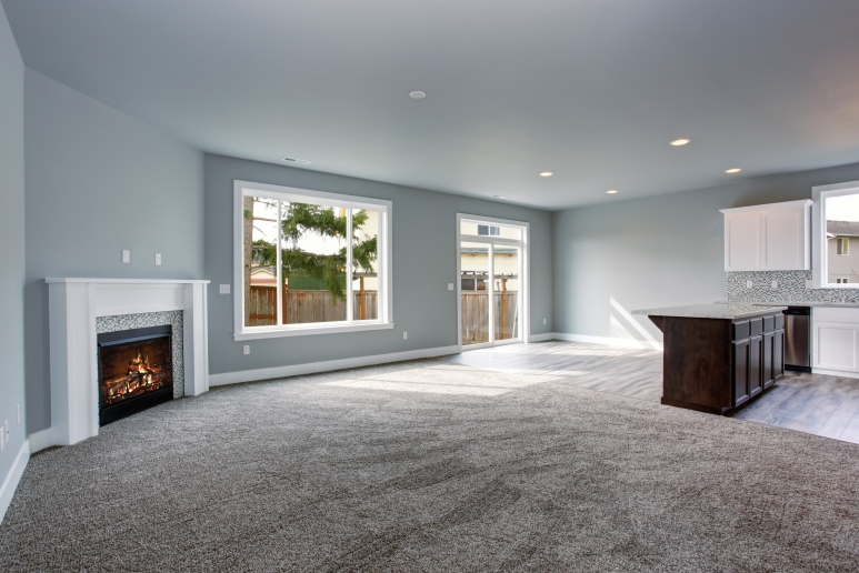 What to consider when choosing carpet home select for Best carpet for basement family room